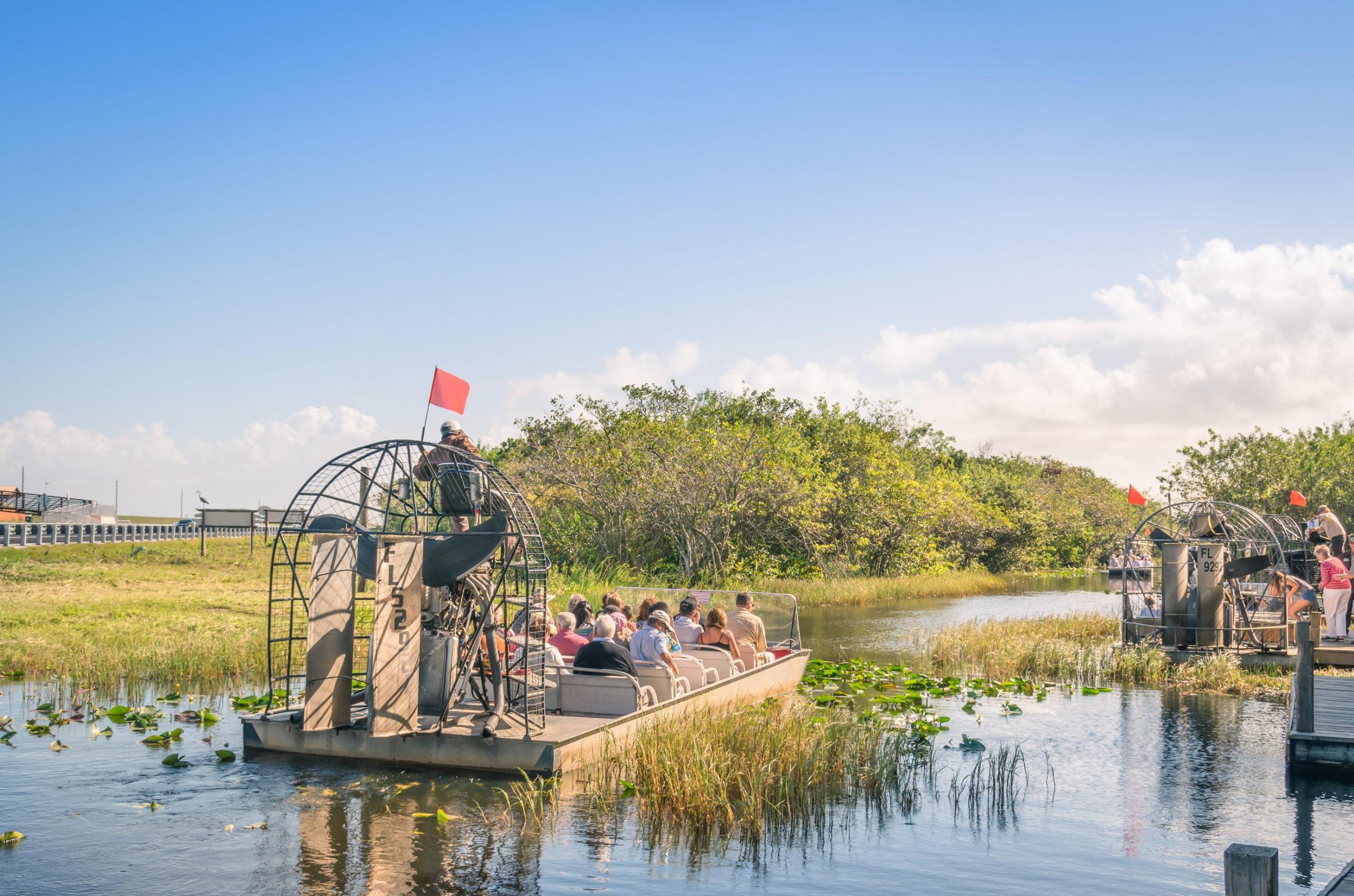 Everglades to naturalny region mokradeł w południowej części stanu Floryda w USA., licencja: shutterstock/By View Apart