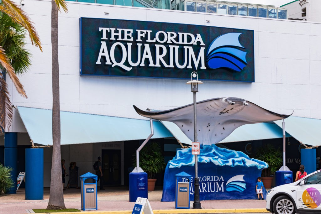 August 24. 2019. Clearwater Marine Aquarium in Clearwater, Florida. Florida's Marine Life Rescue Center. Clearwater, FL, USA.