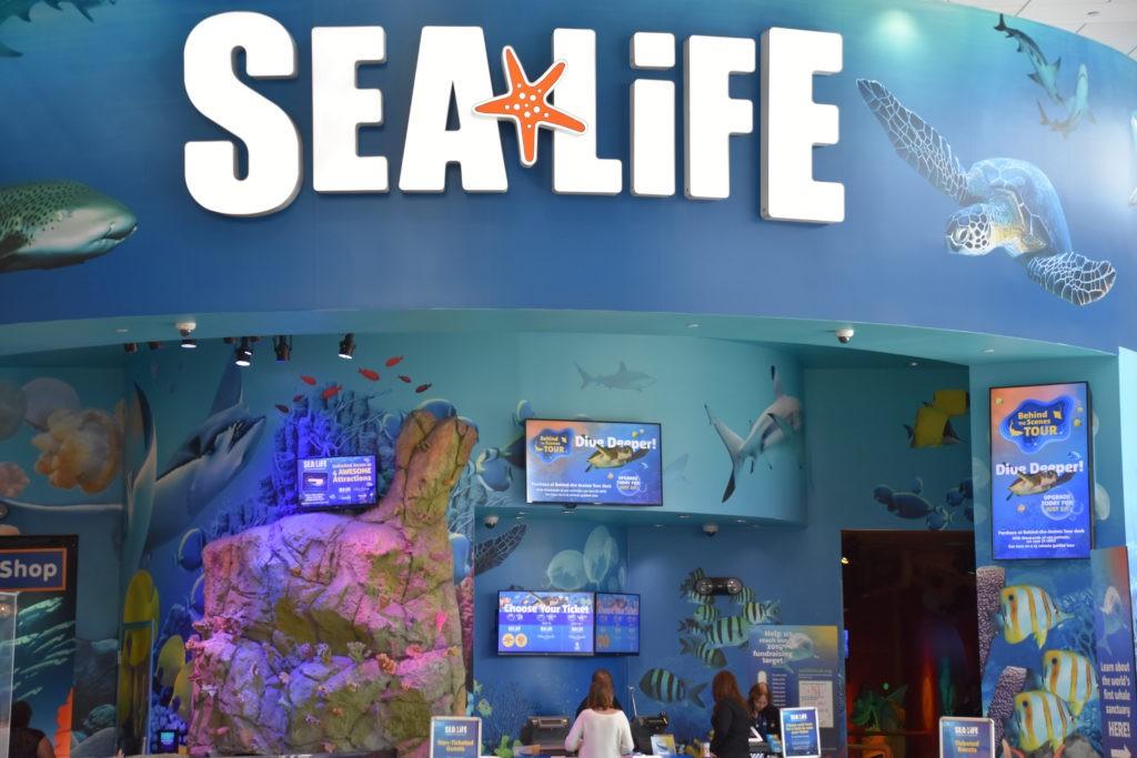 ORLANDO, FL – NOV 24: Sea Life Aquarium at ICON Park in Orlando, Florida, as seen on Nov 24, 2019.  It has family-friendly exhibits with a variety of sea creatures.