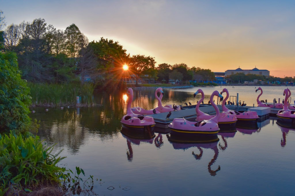 Orlando, Florida. March 09 2019. Flamingo's Paddle boat on colorful sunset background  at Seaworld in International Drive area (1)